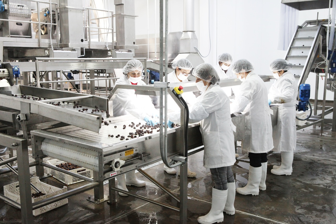 Consumer Goods Processing Plants : Processing plant good valley